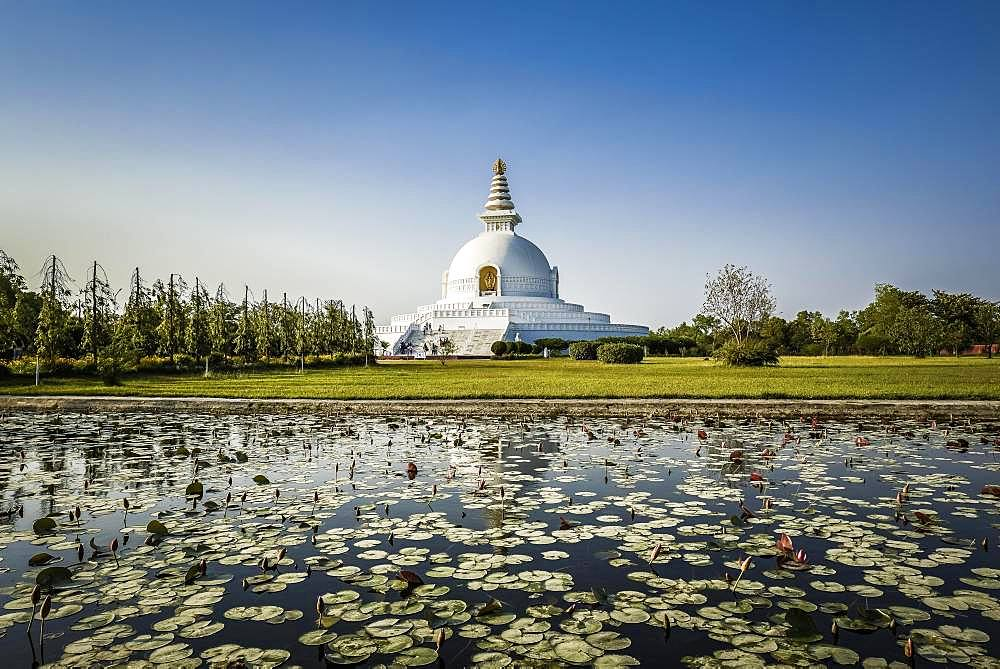 Japanese Peace Pagoda, one of the many international Buddhist temples surrounding the birthplace of Buddha Siddhartha Gautama, Lumbini, Rupandehi, Nepal, Asia
