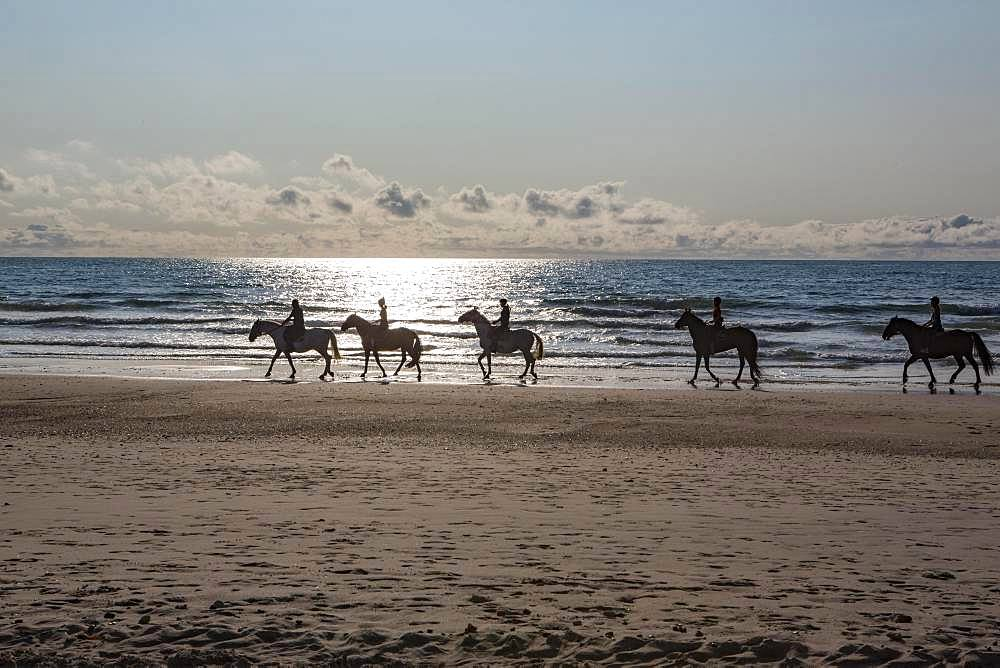 Group of riders on horses backlit on the beach, Gurp Plage, Grayan-et-l`Hopital, Aquitaine, Gironde, France, Europe