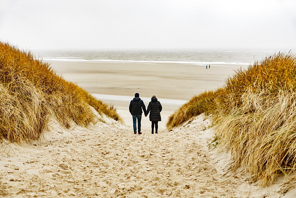In bad weather a couple walks through the dunes to the beach, Langeoog, East Frisia, Niedersachsen, Germany, Europe