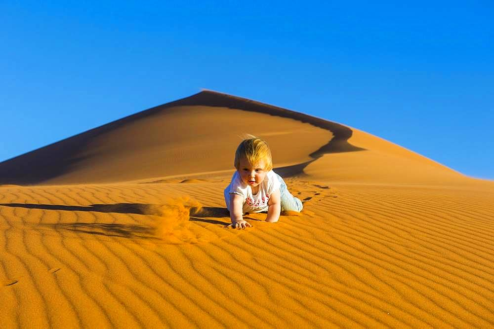 Baby crawling down in the sand, sanddune Dune 45, Namib-Naukluft National Park, Namibia, Africa