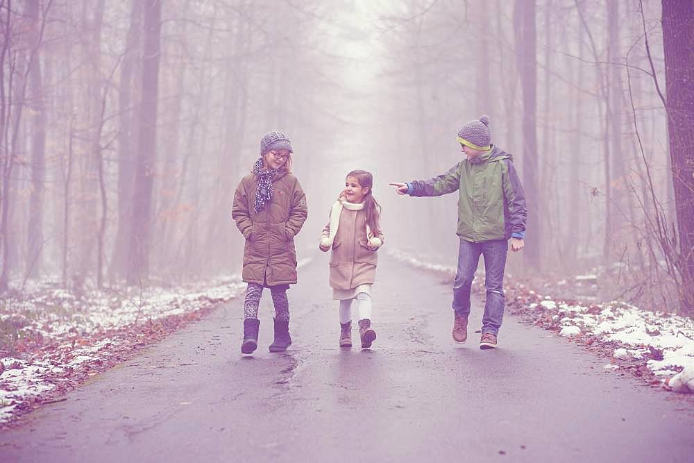 Three children, siblings walking in the woods in fog, winter weather, Baden Wuerttemberg, Germany, Europe