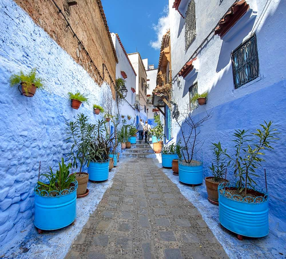 Narrow alley with flower pots, blue houses, medina of Chefchaouen, Chaouen, Tanger-Tetouan, Morocco, Africa