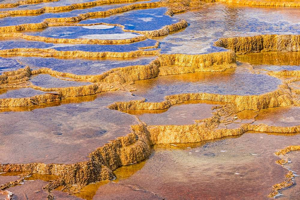 Sinter terraces, hot springs, orange mineral deposits, Palette Springs, Upper Terraces, Mammoth Hot Springs, Yellowstone National Park, Wyoming, USA, North America