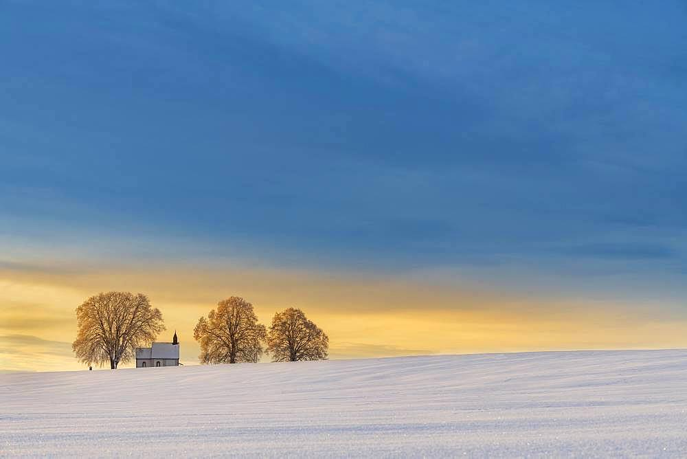 Chapel 14 emergency helpers with old trees in snow-covered landscape at sunrise, Mindelheim, Unterallgaeu, Bavaria, Germany, Europe
