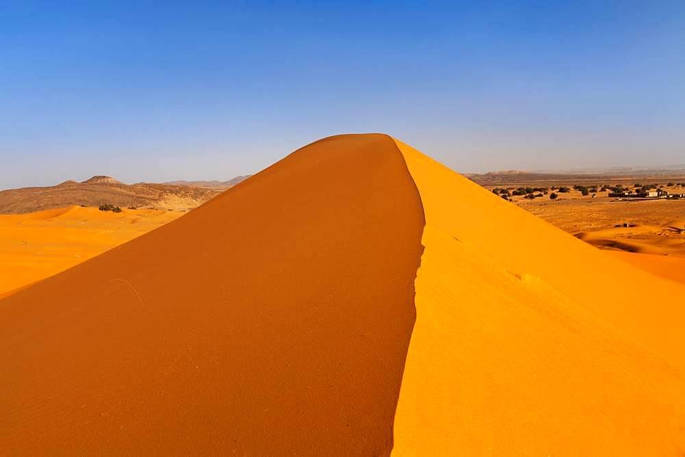 Erg Chebbi, sand dune, southern Morocco, Morocco, Africa