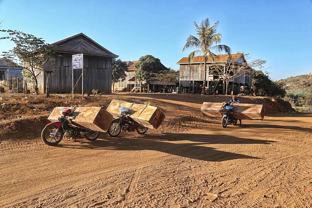 Illegal timber transport by moped on the way to Vietnam, Ratanakiri Province, Cambodia, Asia
