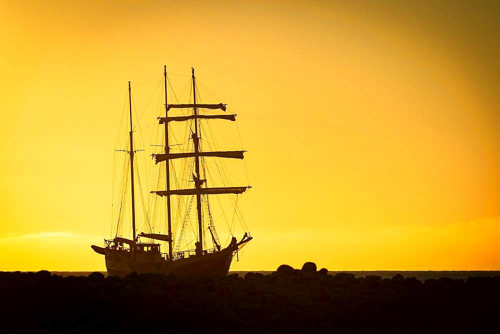 Barquentine Antigua at sunset, Kobbefjord, Spitsbergen archipelago, Svalbard and Jan Mayen, Norway, Europe