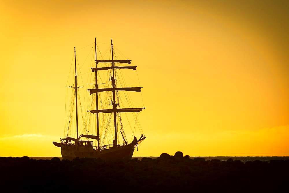 Barquentine Antigua at sunset, Kobbefjord, Spitsbergen archipelago, Svalbard and Jan Mayen, Norway, Europe