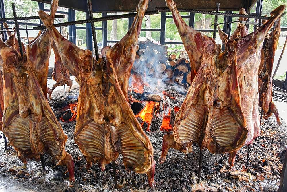 Spit-roasted mutton cooking on open fire, typical and traditional speciality in Tierra del Fuego and Patagonia, Ushuaia, Argentina, South America