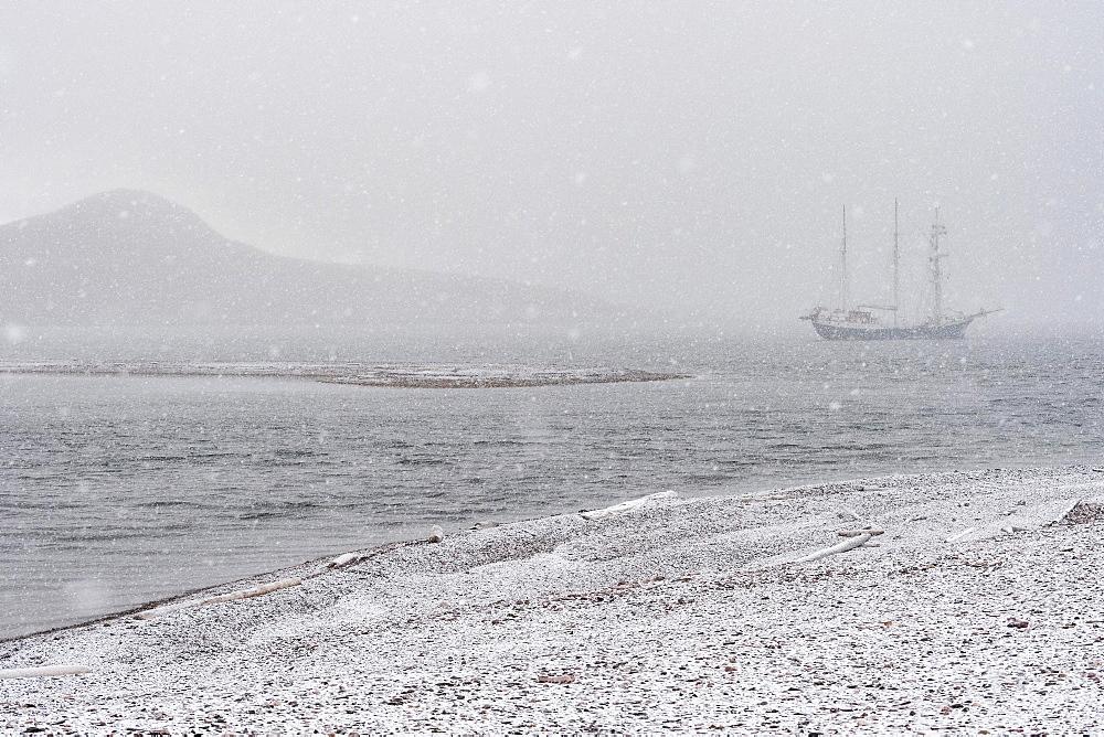 Barkentine Antigua in the snow drift, Snaddvika, Murchisonfjord, Nordaustland, Spitsbergen Archipelago, Svalbard and Jan Mayen, Norway, Europe - 832-384750