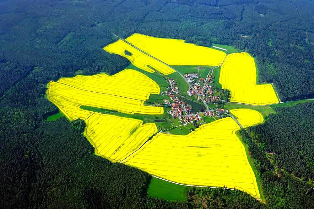 Yellow rape fields around Lichtenau, Thuringia, Germany, Europe