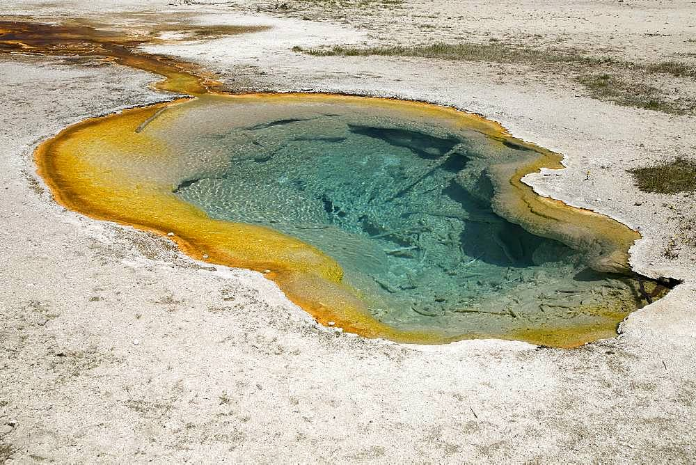 Avoca Spring, Yellowstone National Park, Wyoming, USA, North America