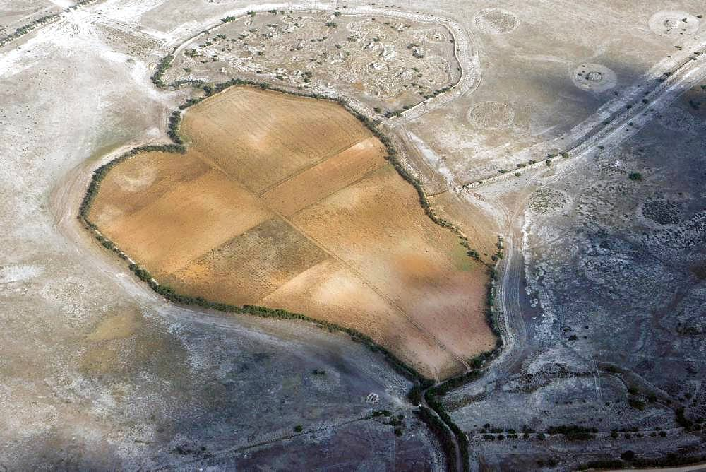 Heart-shaped fields in a dry landscape, Castilla-La Mancha, Spain, Europe