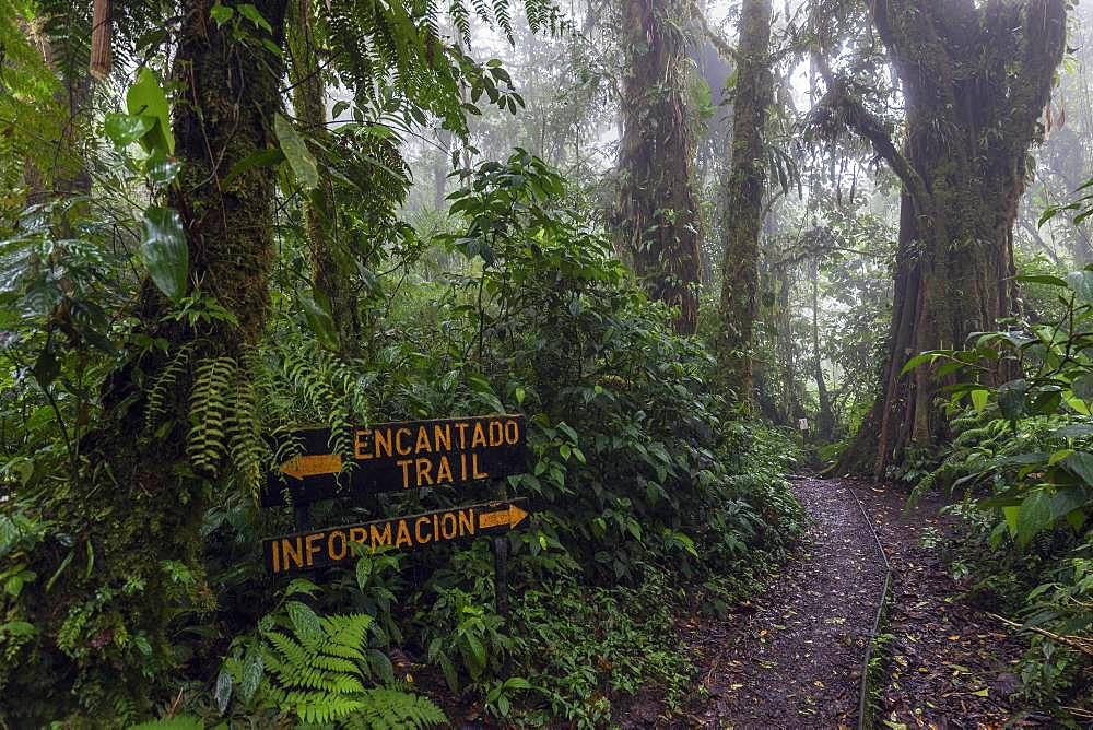 Sign on Encantado Trail, dense vegetation in cloud forest, Reserva Bosque Nuboso Santa Elena, Guanacaste Province, Costa Rica, Central America