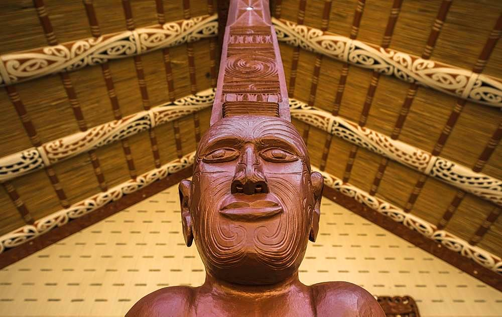 Figure, traditional Maori carving, Te Whare Runanga, Waitangi, Far North District, Northland, North Island, New Zealand, Oceania
