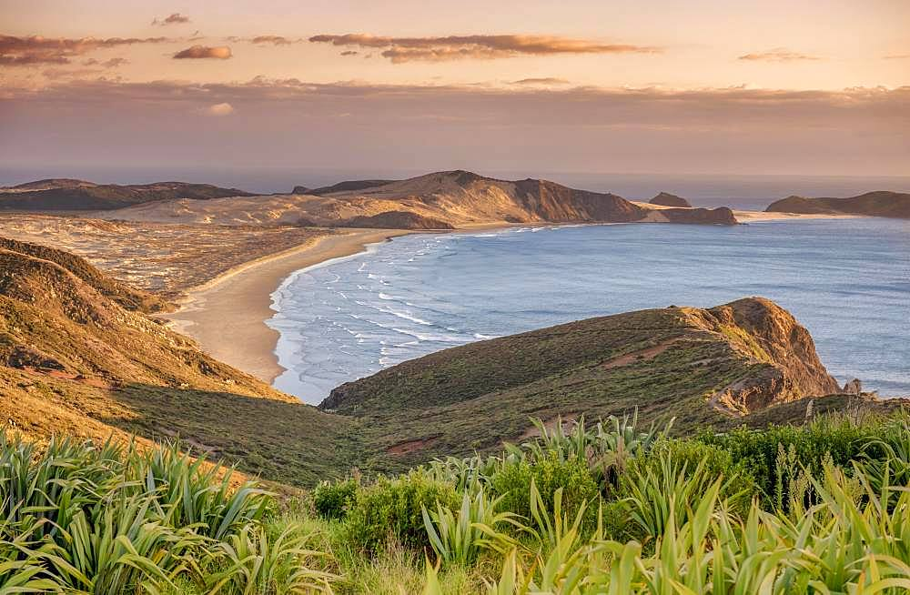 View over Cape Maria Van Diemen with sunset red, Far North District, Northland, North Island, New Zealand, Oceania