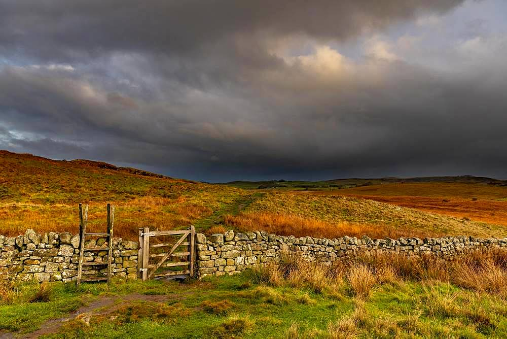 Stone wall in autumn landscape with dark sky, Greenhead, Northumberland, Great Britain