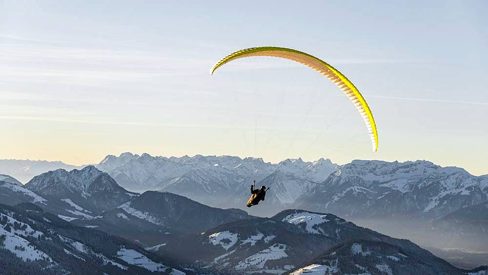 Paragliding in the air in front of a snow-covered Alpine chain in winter, Brixen im Thale, Tyrol, Austria, Europe