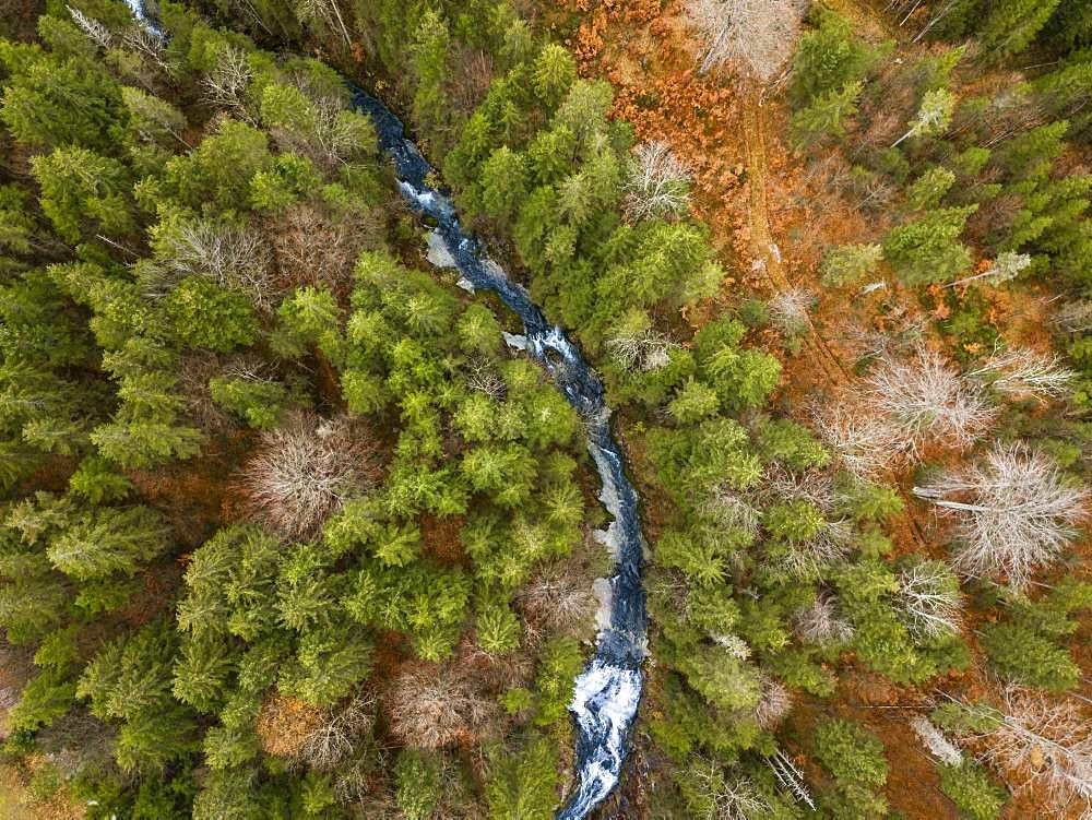 Waterfall Obernachkanal, mixed forest with mountain river in autumn from above, drone shot, bird's eye view, Upper Bavaria, Bavaria, Germany, Europe - 832-385397