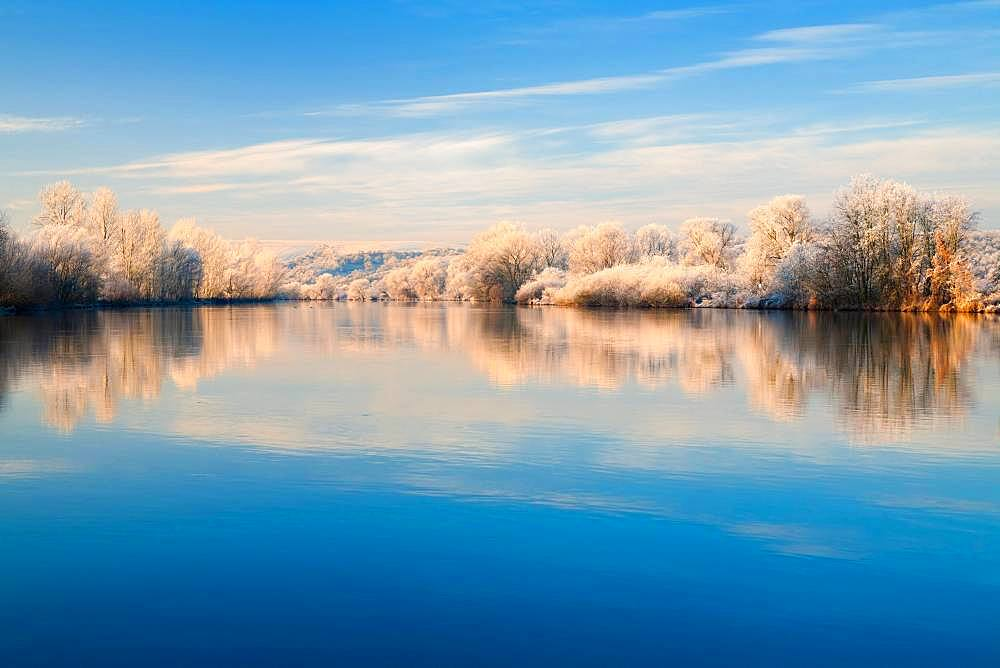 River landscape in winter at the river Saale, trees with frost and snow at the bank in the morning light, water reflection, Lower Saale Valley nature park Park, Saxony-Anhalt, Germany, Europe