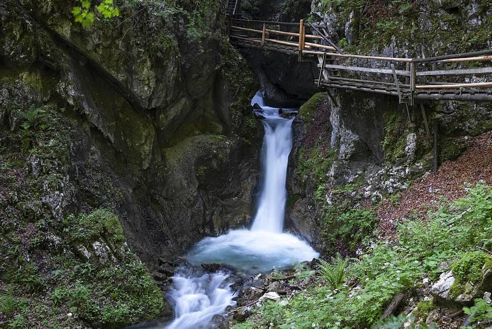 Wooden footbridge over waterfall in the Dr. Vogelgesang gorge at Trattenbach, Spital am Pyhrn, Upper Austria, Austria, Europe