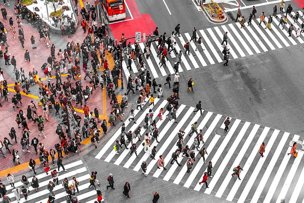 Shibuya crossing, crowds at intersection, many pedestrians cross zebra crossing, Shibuya, Udagawacho, Tokyo, Japan, Asia