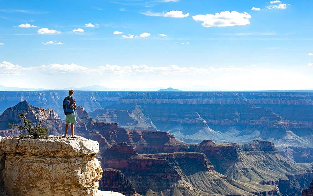 Man standing on rock, view of canyon landscape from Bright Angel Viewpoint, North Rim, Grand Canyon National Park, Arizona, USA, North America