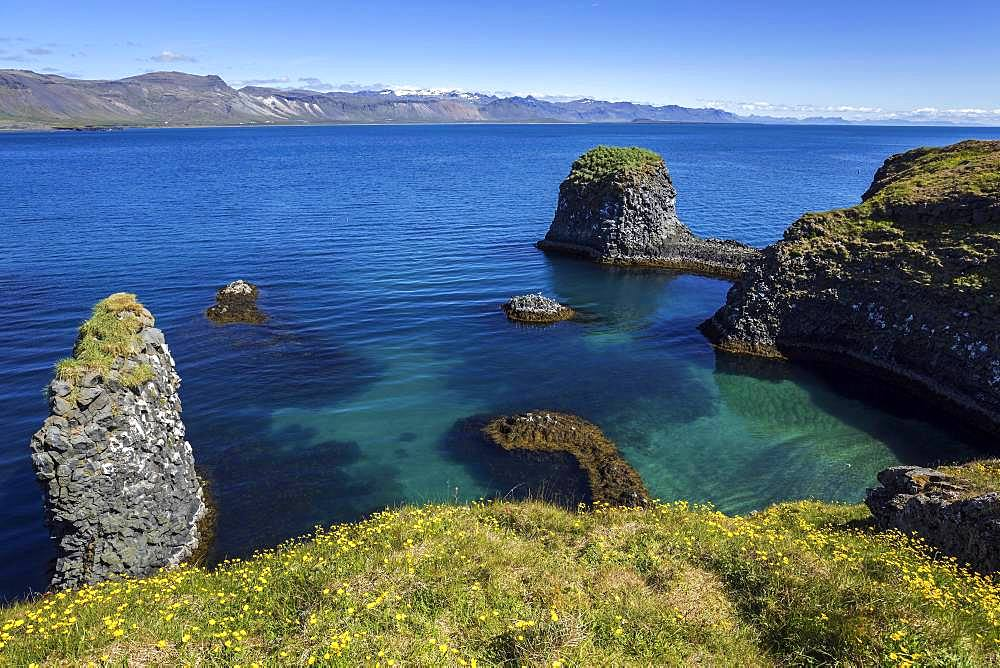 Steep coast, basalt coast near Arnarstapi, behind the mountains of the peninsula Snaefellsness, Iceland, Europe