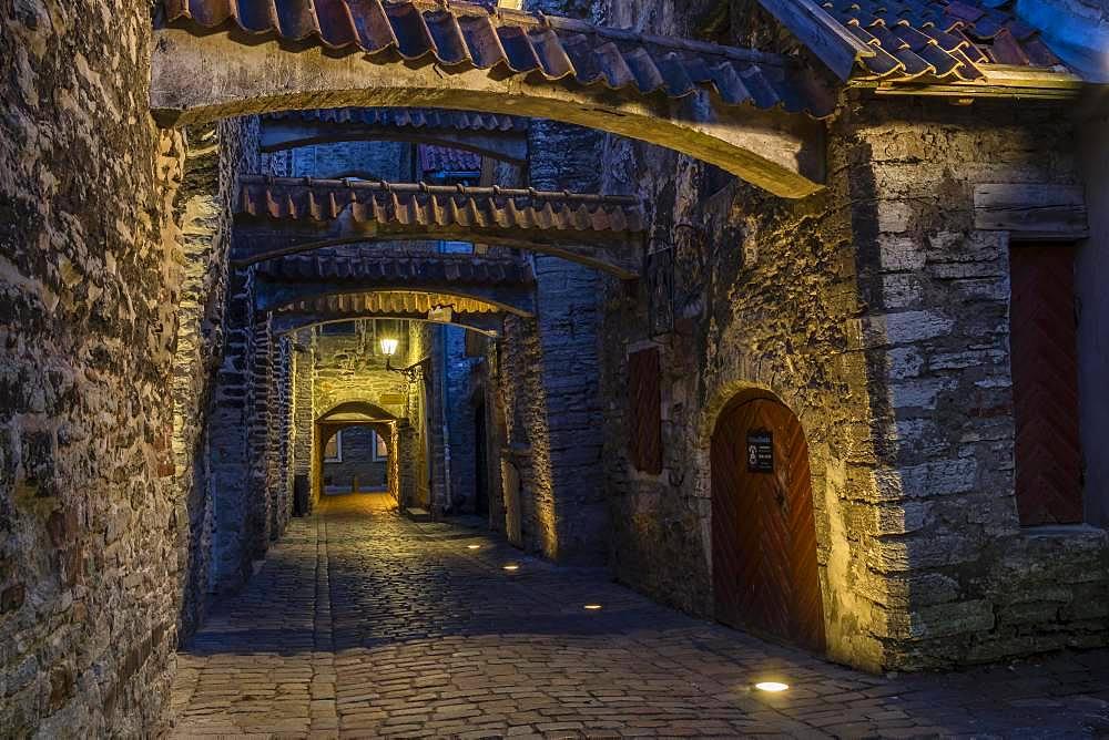St. Catherine's Passage at night, Vanalinn, Tallinn, Estonia, Europe