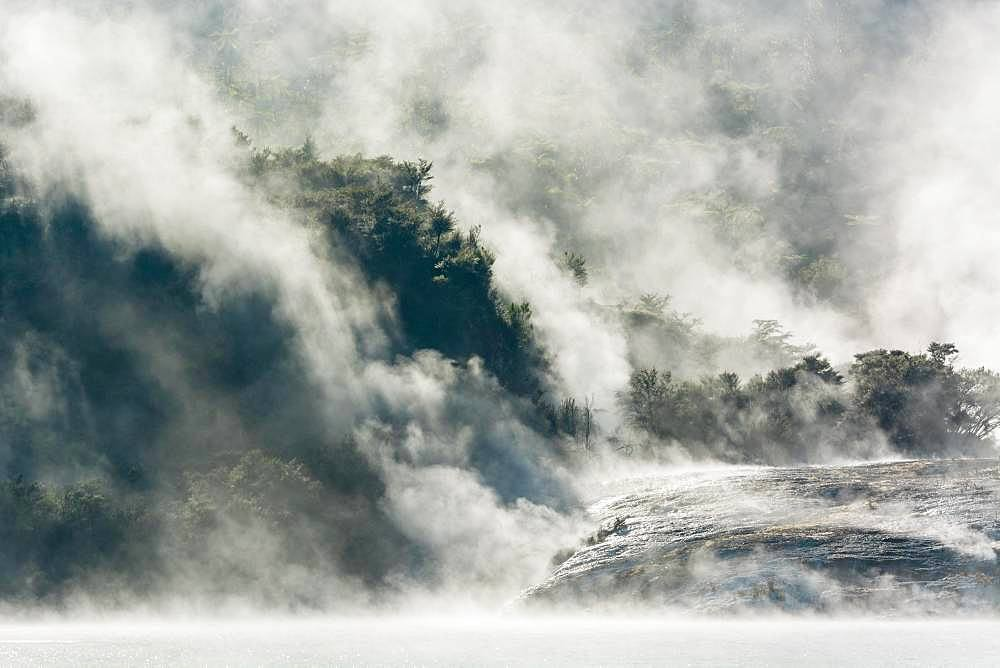 Fog and steam from hot springs, Orakei Korako Geothermal Park, Geothermal area, Hidden Valley, Taupo Volcanic Zone, North Island, New Zealand, Oceania