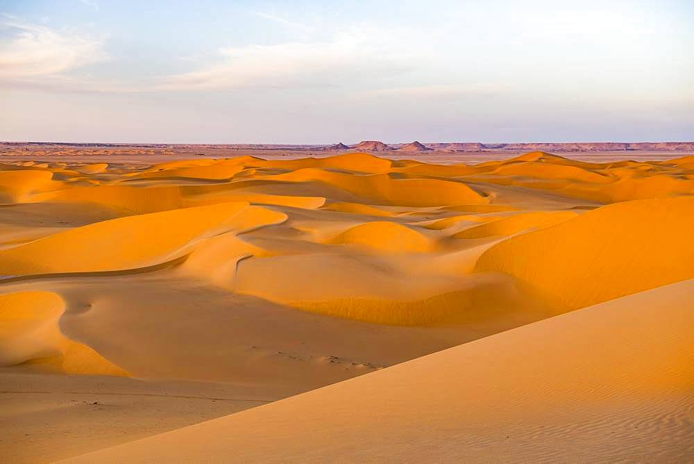 Evening light in the sanddunes of the Sahara, Timimoun, Algeria, Africa
