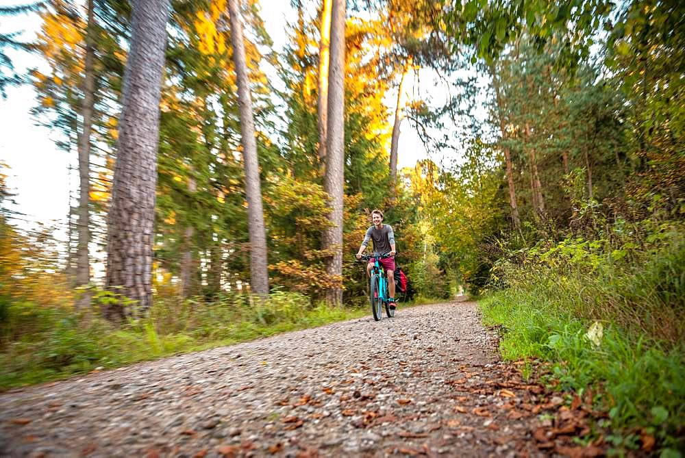 Young man cycling in the autumn forest, Perlacher Forst, Munich, Upper Bavaria, Bavaria, Germany, Europe