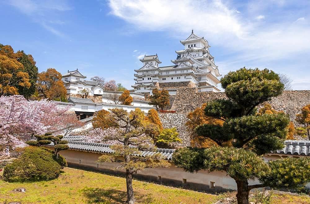 Castle Himeji, Himeji-jo, Shirasagijo or white heron castle, cherry blossom, Himeji, prefecture Hyogo, Japan, Asia