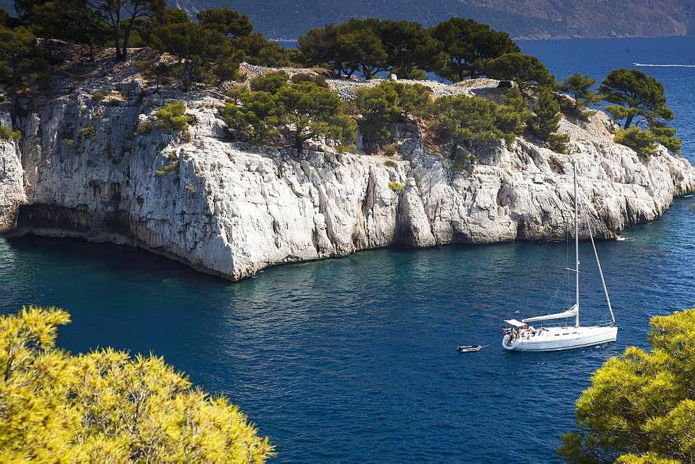 Rocky coast at Port Pin, Calanque de Port Pin, Provence, France, Europe