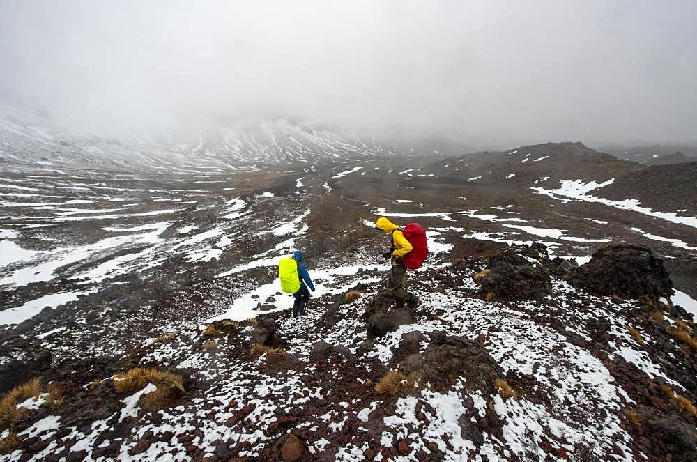 Hikers on hiking trail Tongariro Alpine Crossing in snow over lava fields, Tongariro National Park, North Island, New Zealand, Oceania