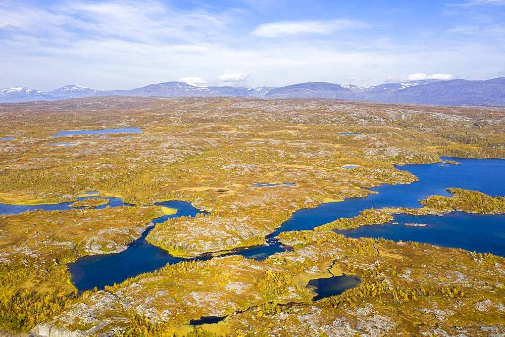 Autumnal fjeld, Lake Tornetraesk, Bjoerkliden, Norrbotten, Lapland, Sweden, Europe