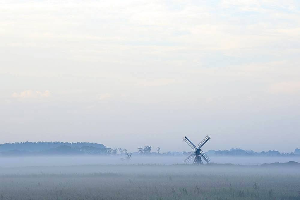 Small windmill with ground fog, Texel, North Holland, Netherlands