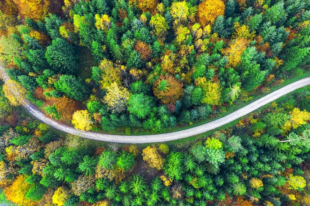 Drone shot, autumn in the Swabian Forest, Herrenbachtal, district Goeppingen, Baden-Wuerttemberg, Germany, Europe