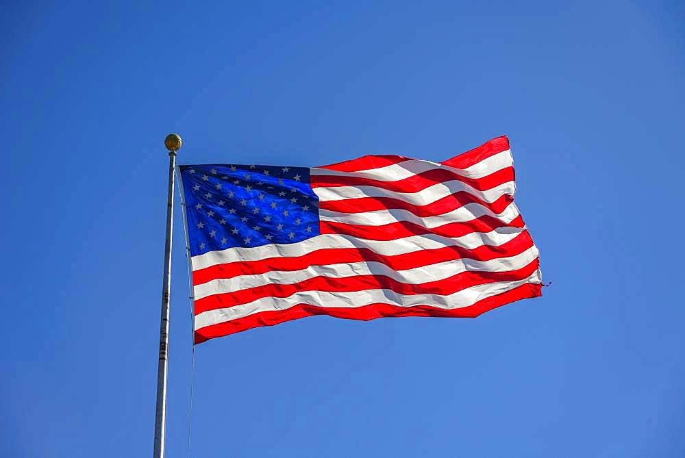 American flag, national flag, US-American flag blowing in the wind against a blue sky, USA, North America