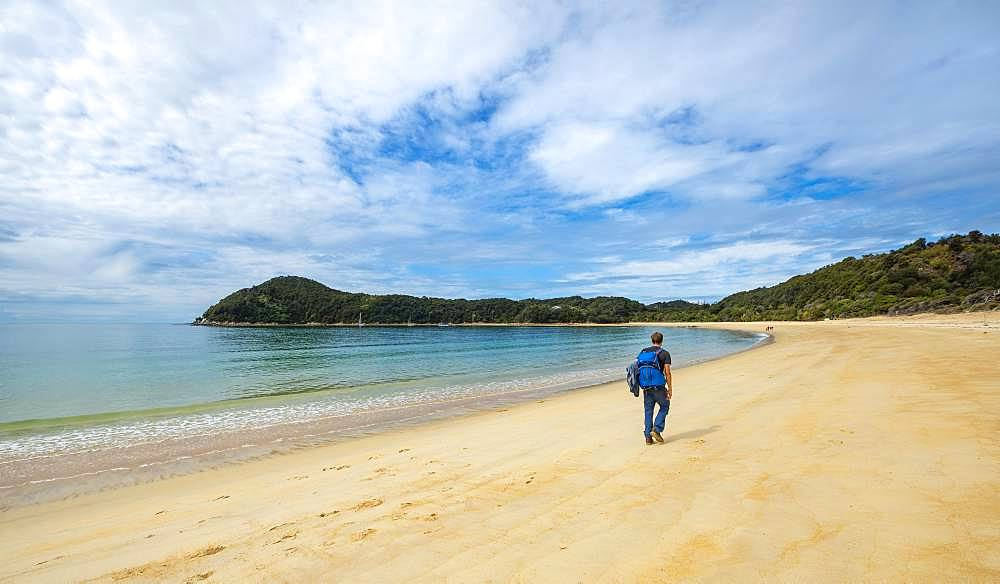 Young man walks on the beach, Anchorage Bay, Abel Tasman National Park, Tasman, South Island, New Zealand, Oceania