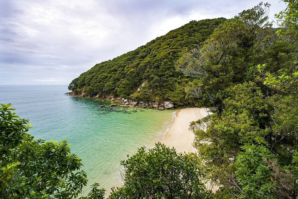 Small bay with beach, near Bark Bay, Abel Tasman National Park, Tasman, South Island, New Zealand, Oceania