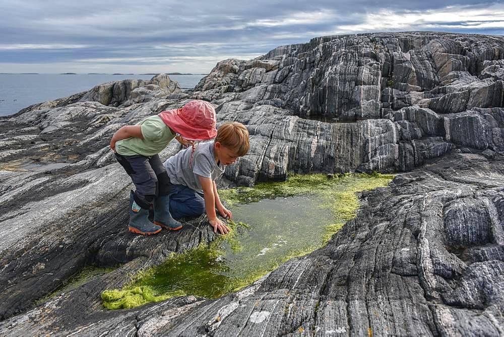 Boy and girl playing between rocks with algae, Straumsholmen, Atlantic Road, Norway, Europe