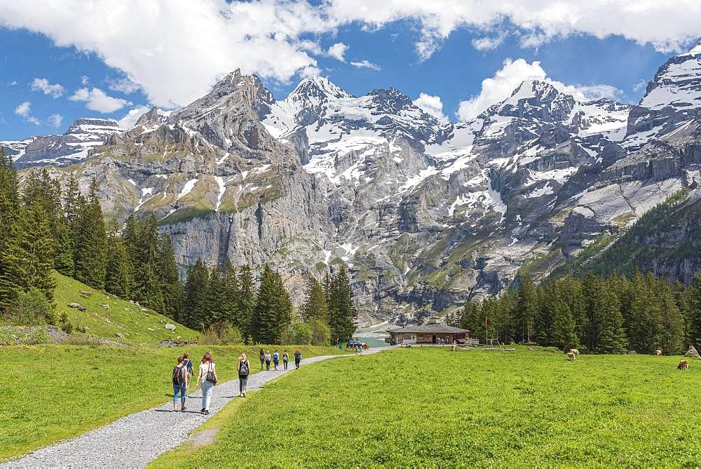 Hiking trail to the Restaurant Zur Sennhuette at the Oeschinensee, behind Blueemlisalp, Kandersteg, Bernese Oberland, Canton of Bern, Switzerland, Europe