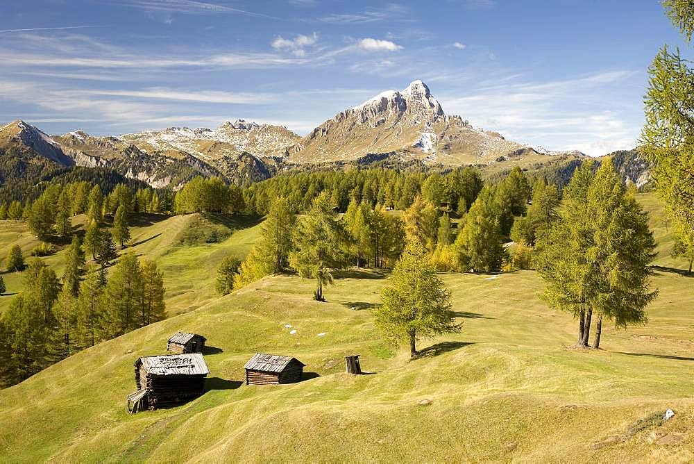 Autumn on the meadows of the Armentara, Dolomites, South Tyrol, Italy, Europe