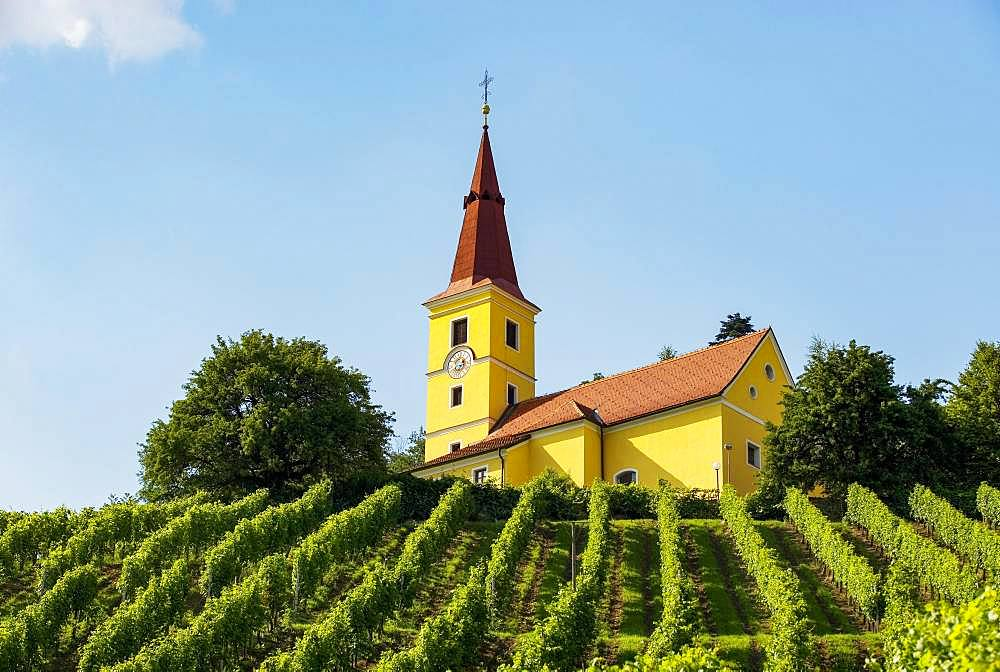 Kapfenstein, South Styrian wine country, Styrian thermal spa country, Styria, Austria, Europe - 832-386985
