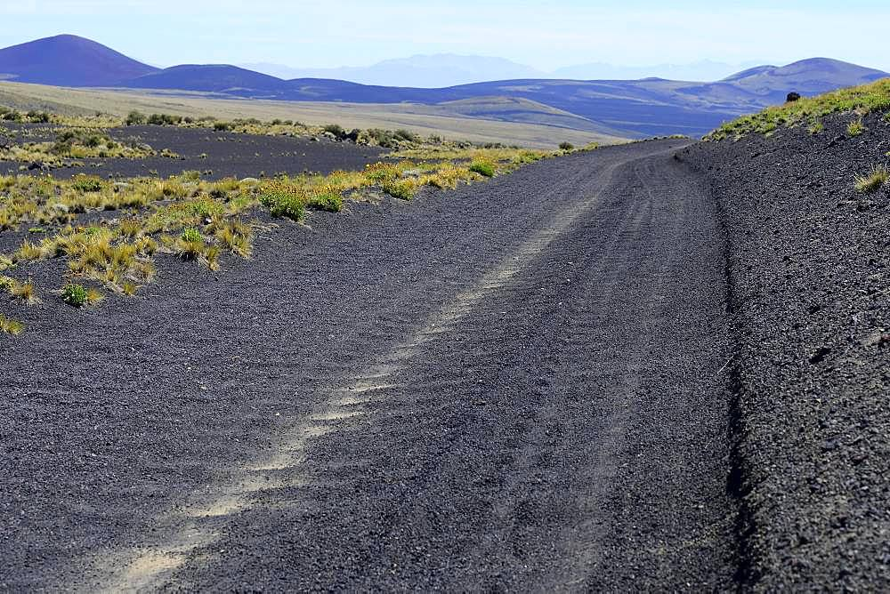 Track through volcanic lunar landscape, Reserva La Payunia, Province of Mendoza, Argentina, South America