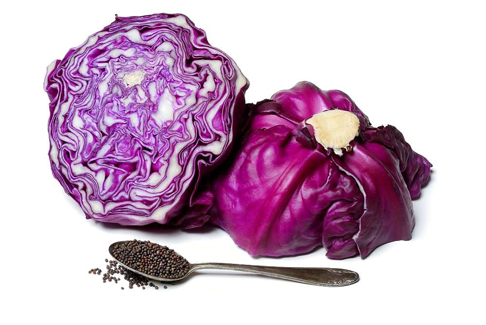 Red cabbage seeds in spoon and red cabbage, Germany, Europe