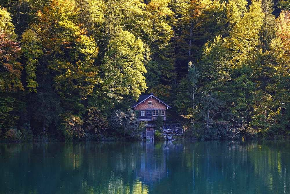 Wooden hut at the Freibergsee, near Oberstdorf, Oberallgaeu, Allgaeu, Swabia, Bavaria, Germany, Europe