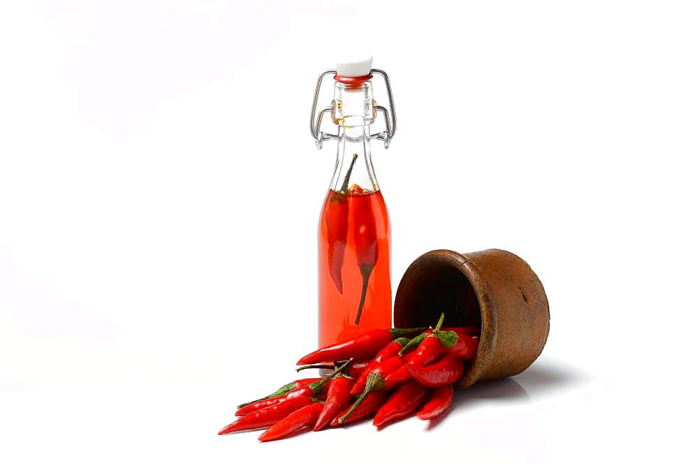 Chili oil in bottle and red chillies in ceramic vessel, Germany, Europe