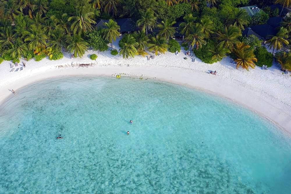 Bathing bay with sandy beach, lagoon and palm trees, Summer Island, North Male Atoll, Maldives, Asia